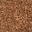 Buckwheat - 
