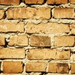 Brick wall — Stock Photo #1208607