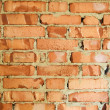 Brick wall — Stock Photo #1208778
