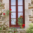 Window — Stock Photo #2140565