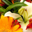 Bouquet — Stock Photo #2189600