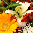 Bouquet — Stock Photo #2216673