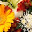 Bouquet — Stock Photo #2469120