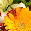 Bouquet — Stock Photo #2469136