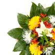 Bouquet — Stock Photo #2469151