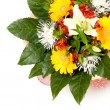 Bouquet — Stock Photo #2469152