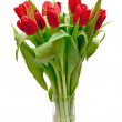 Red tulips — Stock Photo #2469427