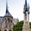 Notre Dame De Paris — Stock Photo #2489360