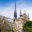 Notre Dame De Paris — Stock Photo #2569002
