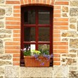 Window — Stock Photo #2569049