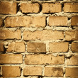 Brick wall — Stock Photo #2593049