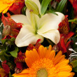 Bouquet — Stock Photo #2594202