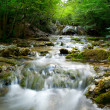 Natural Spring Waterfall — Stock Photo #1336370