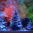 Magic Christmas tree — Stock Photo #1337459