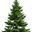 Christmas tree — Stock Photo #1337671