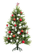 Abete albero di natale con luci colorate — Foto Stock