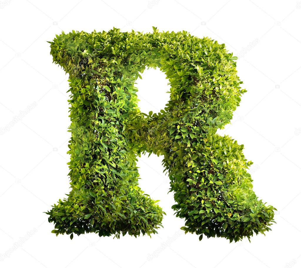 One letter of bush alphabet — Stock Photo #1337405