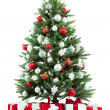 Stockfoto: Christmas fir tree