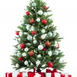 fir kerstboom — Stockfoto