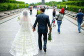 Wedding walk — Stock Photo