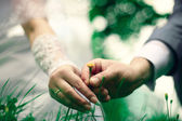 Wedding in summer — Stock Photo