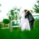 Wedding walk — Stock Photo