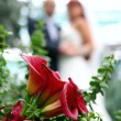Wedding bouquet — Stock Photo #1280517