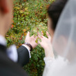 Newlyweds on the walk — Stock Photo #2583202