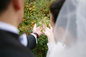 Newlyweds on the walk — Stock Photo