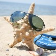 Starfish at the beach — Stock Photo #1567577