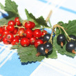Currant — Stock Photo #2097273