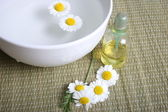 Camomile blooms in water — Stock Photo