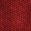 Red Dragon Skin — Stock Photo
