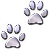 3D Silver Animal Foot Prints — Stockfoto