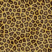 Leopard Fur — Stock Photo