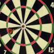 Royalty-Free Stock Photo: Bulls Eye