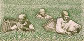 Farmers picking tea — Stock Photo