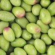 Stock Photo: Raw Olives
