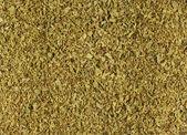Dried Oregano — Stock Photo