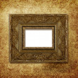 Grungy frame — Stock Photo