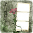 Shabby background with stamp-frame — Stock Photo