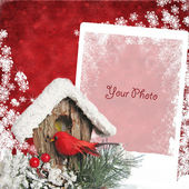 Christmas card with bullfinch — Stock Photo