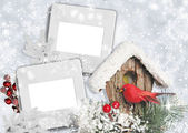 Holiday card with bullfinches — Stock Photo