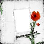 White frame with poppy — Stock Photo