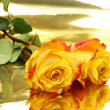 Yellow roses — Stockfoto #1229594
