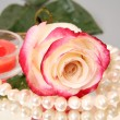 Rose and pearls — Stock Photo