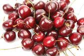 Ripe cherry — Stock Photo