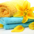 Towel and flower — Stock fotografie #1361158