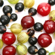 Stock Photo: Ripe berries