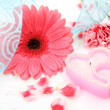 Stock Photo: Pink flower and candle
